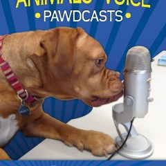Ontario SPCA Animals' Voice Pawdcast – Pet Nutrition FAQ's