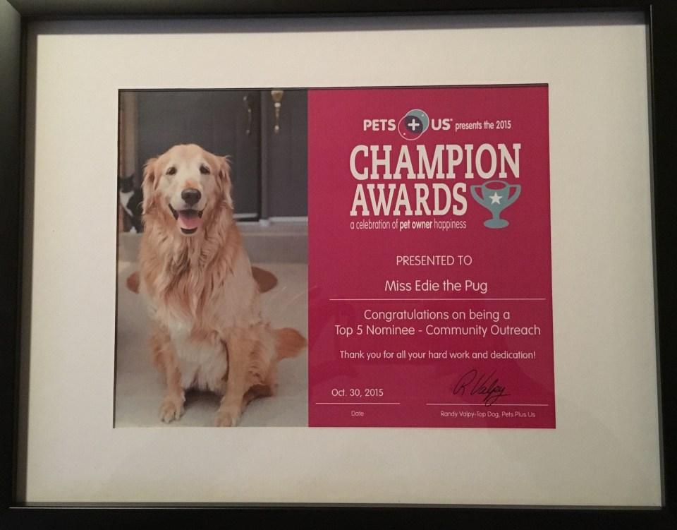 PetsPlusUs Champion Awards