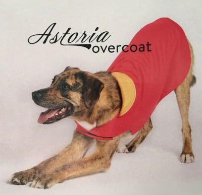 Gold Paw Series - Astoria Overcoat #sp