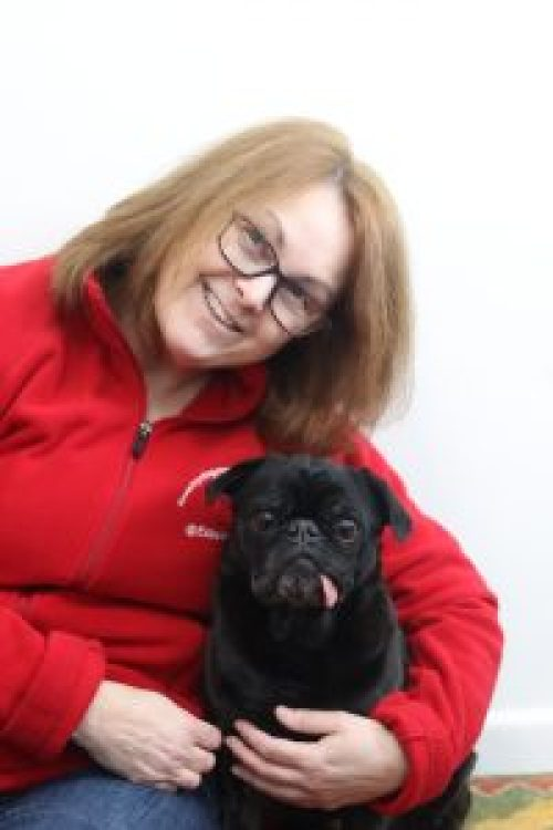 About Us - Kelly with Edie and Edna the Pugs