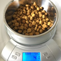 How much is (Really) in your Dog's Food Bowl?