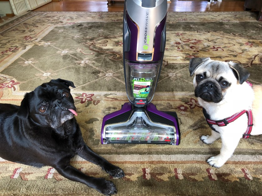 Bissell Crosswave Pet Pro - Review #ad