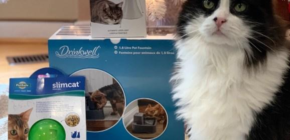 PetSafe Canada's Holiday Cat Prize Bundle Giveaway!