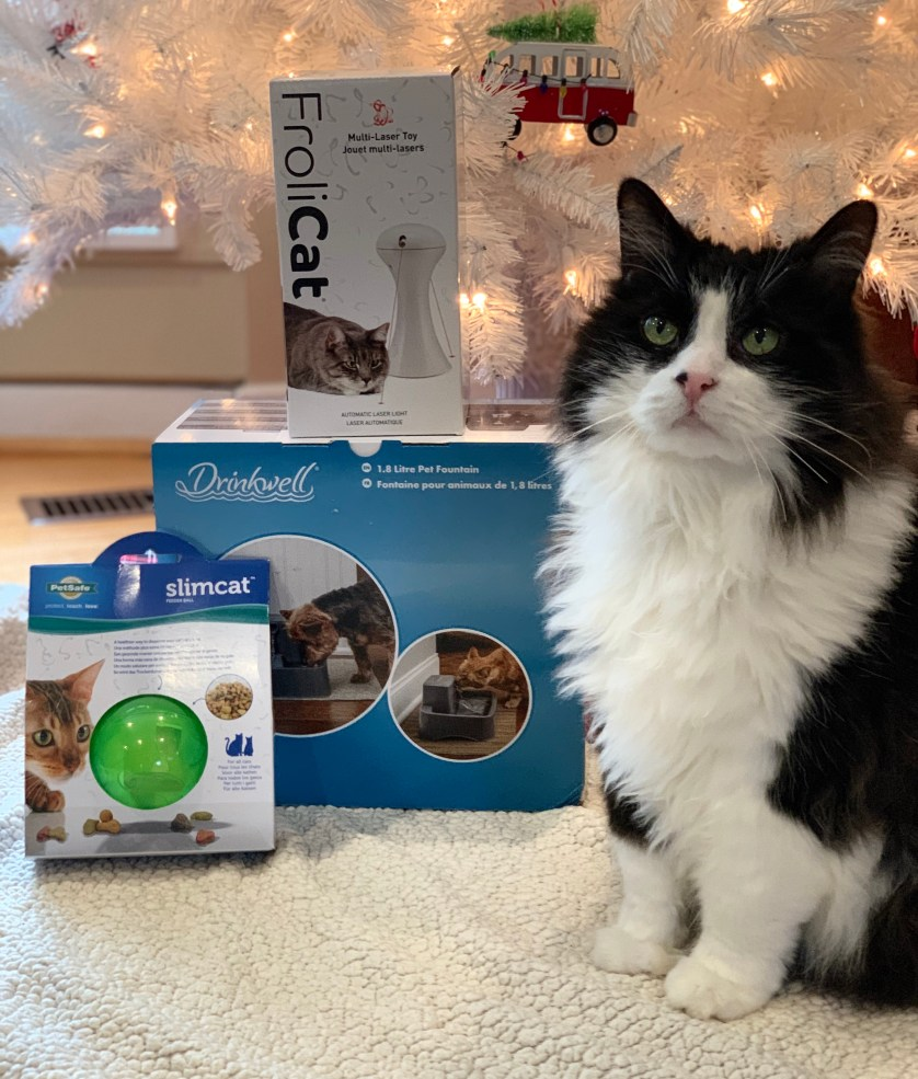 PetSafe Canada's Holiday Cat Prize Bundle Giveaway! #ad