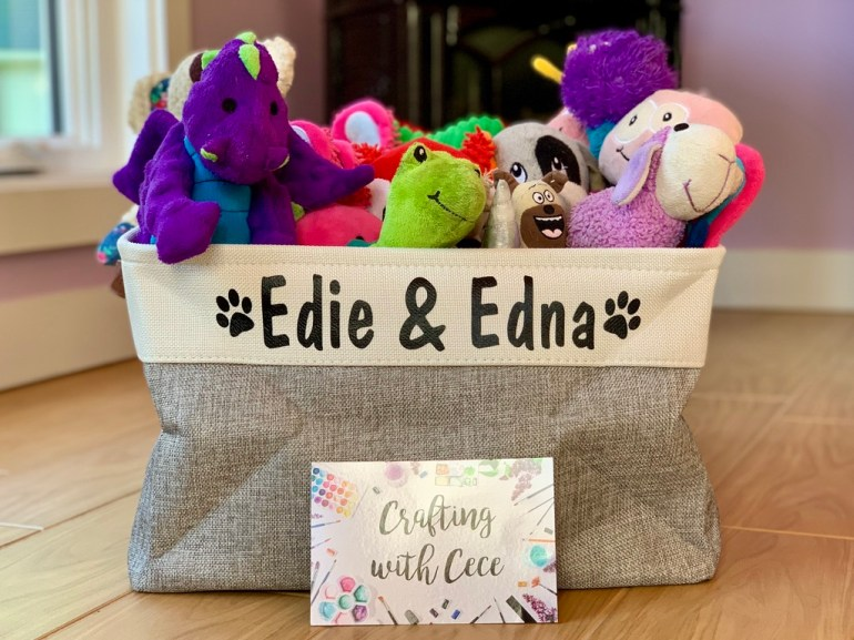 Personalized Pet Toy Bins
