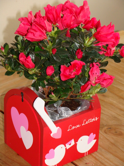 Valentine's day love letters mailbox