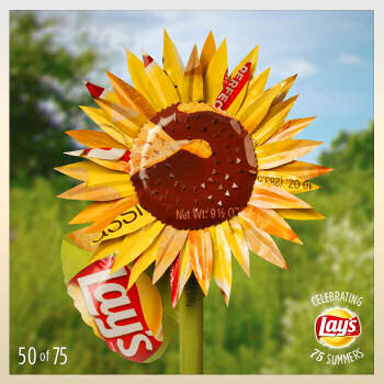 lays celebrating 75 days of summer