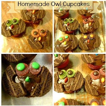 DIY Homemade owl cupcakes