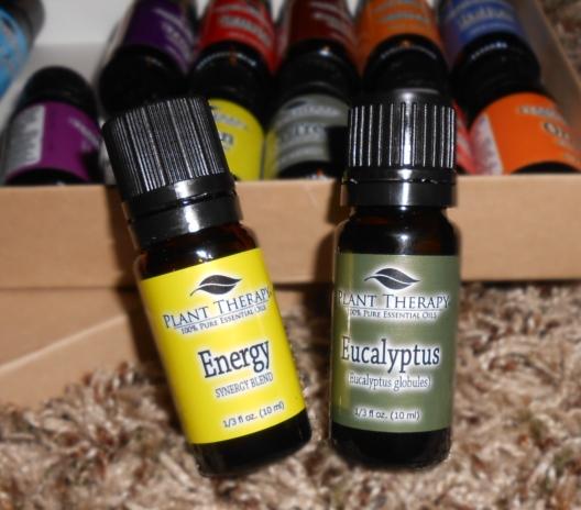 Energy synergy and euclyptus