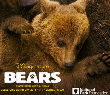 Disneynature bears preview