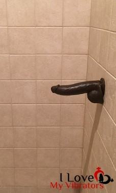 mr marcus suction cup dildo on shower wall