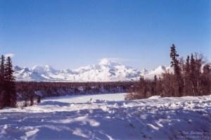 Denali NP mountain in winter