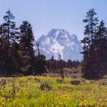Grand Teton NP Mt Moran