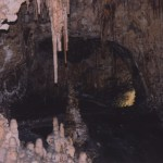 Carlsbad Caverns NP cave entrance