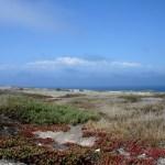 Channel Islands NP Santa Cruz
