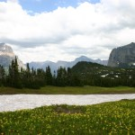 Glacier NP Logan Pass