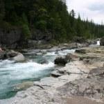 Glacier NP McDonald Creek