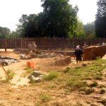 Colonial NHP dig