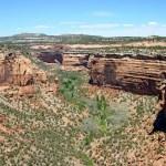Colorado NM Ute Canyon