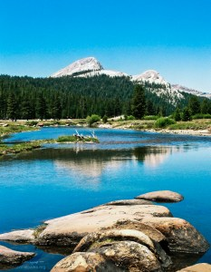 Yosemite NP Tuolumne Meadows