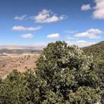 Capulin Volcano Crater Rim Trail pano