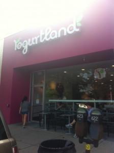 Newton Yogurtland Grand Opening