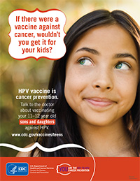 A Perspective on the HPV Vaccine