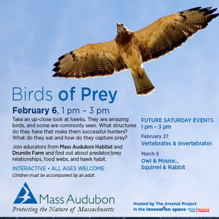 Arsenal Project - Natural Science Saturdays - Feb 6