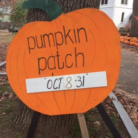 Auburndale Pumpkin Patch!