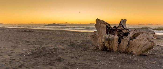 paraparaumu-beach-kapiti-coast