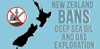 New Zealand Oil