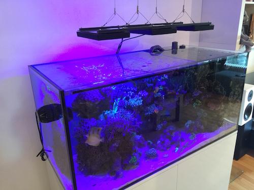 Abdeckung Meerwasser Aquarim aus Glas