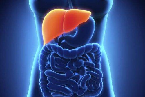 you have a liver problem