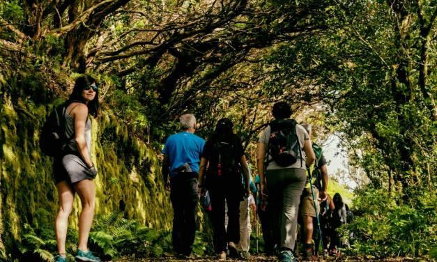 El programa de rutas en la naturaleza de Santa Úrsula incluye este año un viaje a Madeir