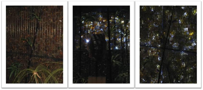 garden-by-daum
