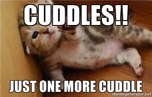 Cuddles Just One More Cuddle