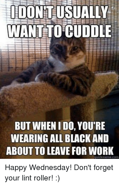 Funny Animal Wednesday Meme : Inspirational wednesday quotes with funny memes