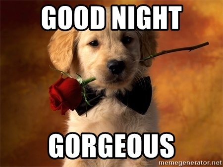 Funny Goodnight Memes For Him : Cute good night text messages for him her good night quotes