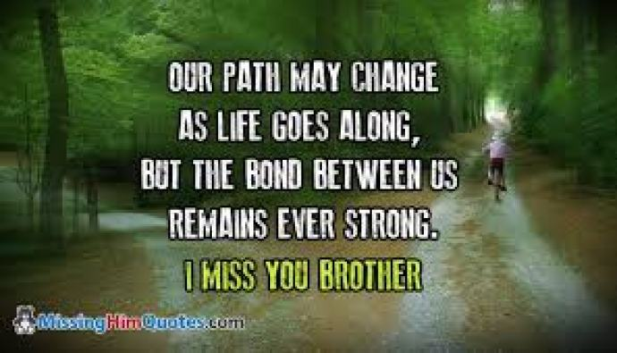 Funny Brother Quotes Gorgeous Funny And Sweet I Miss You Brother And Sister Quote