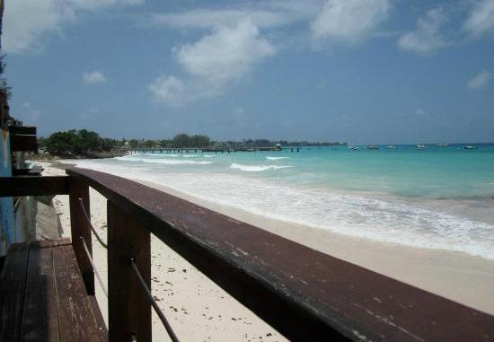 Surfer's Cafe Barbados