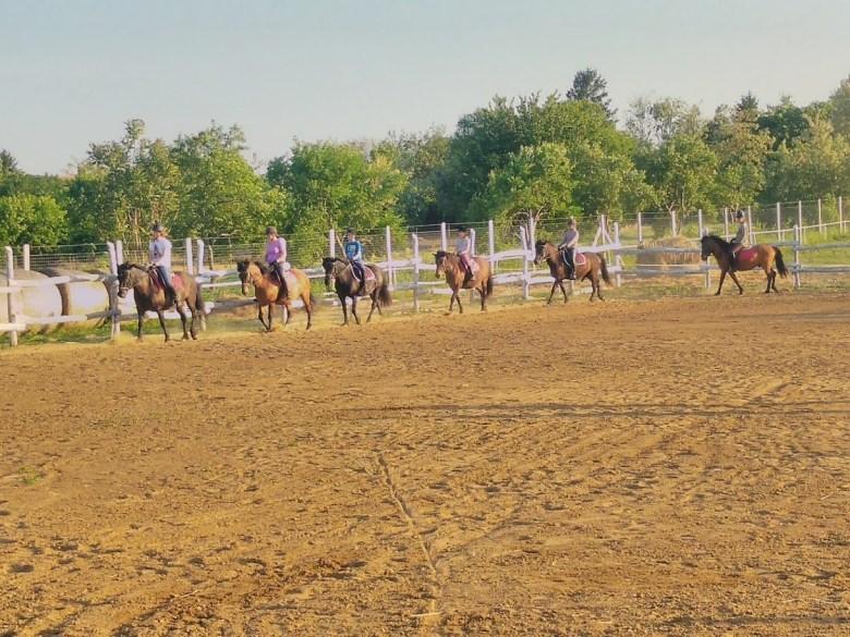 Sarud lovasok