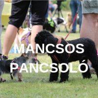 MANCSOS PANCSOLÓ