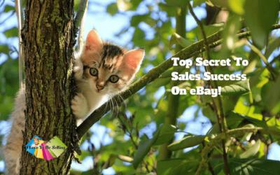 Top Secret To Sales Success On eBay!
