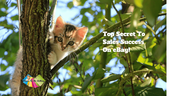 Top Secret To Sales Success On eBay!