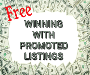 Winning with Promoted Listings
