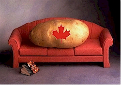 couchpotato2.jpg