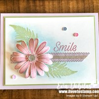Quick and Easy Daisy Lane Card