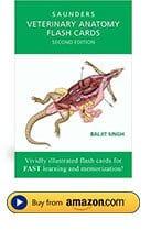 Best Veterinary Books and Study Material | I Love Veterinary