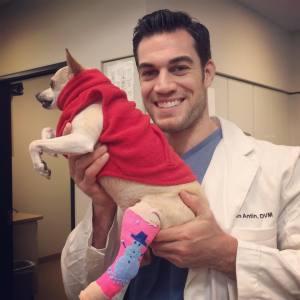 Dr. Evan Antin Vet Dog