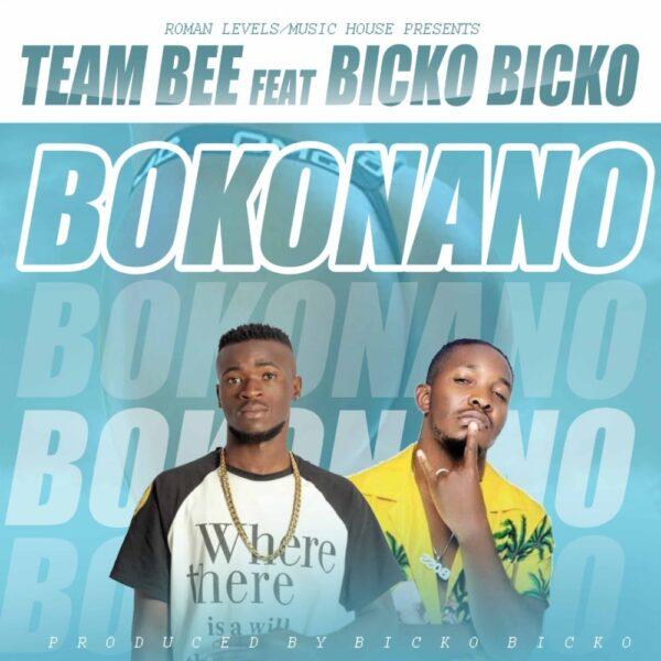 Team Bee ft. Bicko Bicko - Bokonano